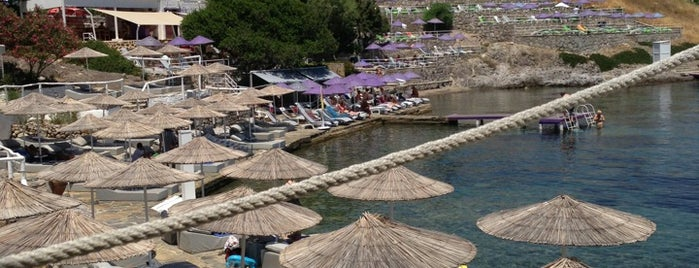 Doria Beach is one of Bodrum.