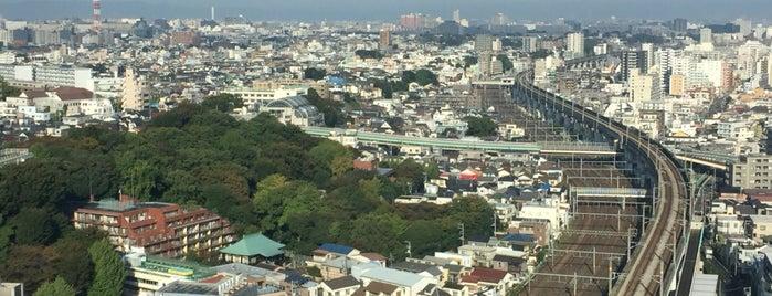 Hoku Topia is one of Lugares favoritos de 高井.