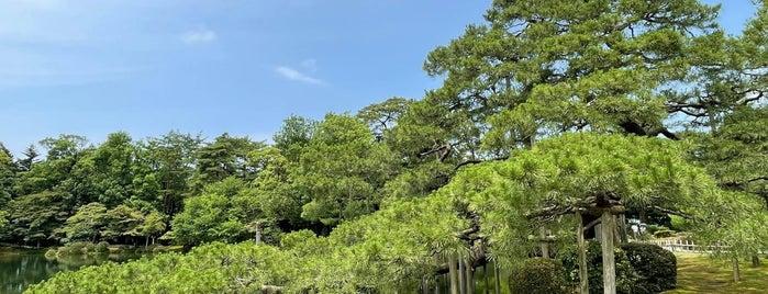 Karasakinomatsu Pine is one of สถานที่ที่ 高井 ถูกใจ.