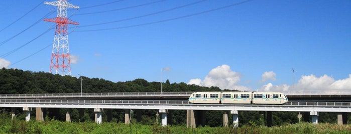 宮の杜公園 is one of Lugares favoritos de 高井.