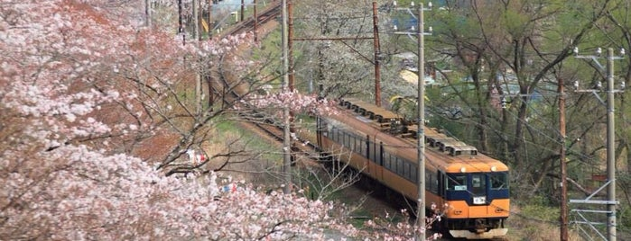 家山さくらのトンネル is one of 撮り鉄スポット.