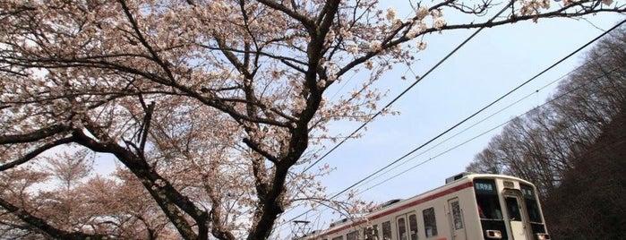 びわのかげ総合運動公園 is one of 高井'ın Beğendiği Mekanlar.
