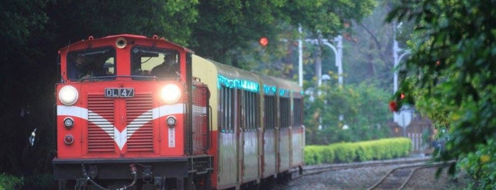 Alishan Forest Railway Chiayi Garage Park is one of Lugares favoritos de 高井.