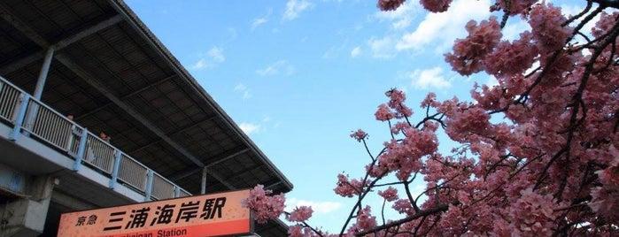 Miurakaigan Station (KK71) is one of Lugares favoritos de 高井.