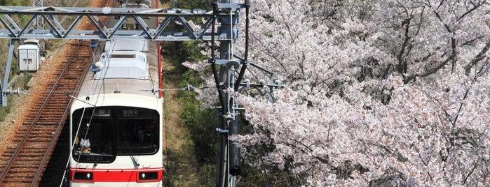 神戸ドライビングスクール is one of Lugares favoritos de 高井.