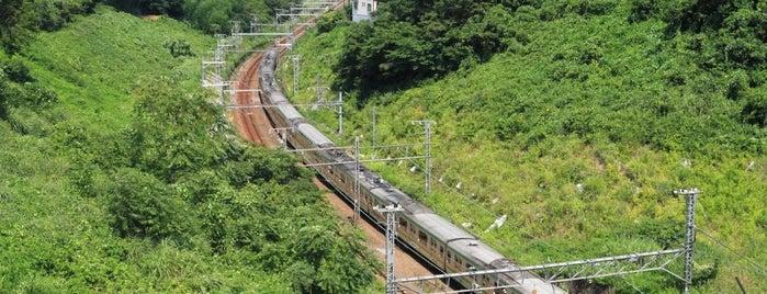 東海道本線 清水谷戸トンネル is one of Lugares favoritos de 高井.