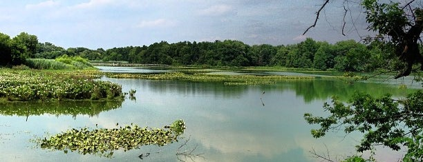 John Heinz National Wildlife Refuge is one of สถานที่ที่ Chris ถูกใจ.