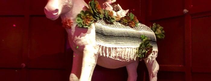 Ghost Donkey is one of Las Vegas.