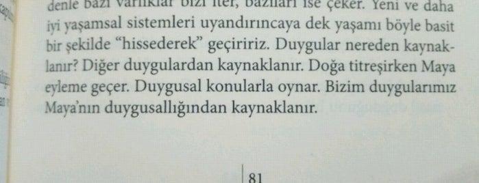 Aktiffelsefe is one of Özgür Yaşarさんの保存済みスポット.