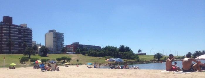 Playa del Puertito del Buceo is one of To do: Uruguay.