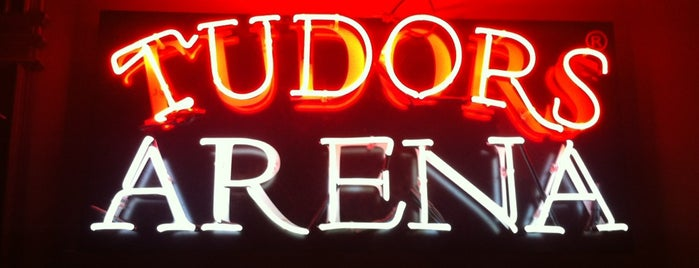 Tudors Arena is one of Locais curtidos por Zeynep.