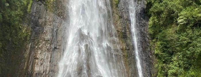 Manawaiopuna Falls (Jurassic Falls) is one of Kauai.
