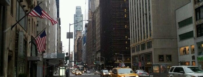Quinta avenida is one of New York, NY.