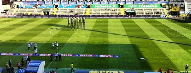 Stadio Ennio Tardini is one of Lega Italia Serie A TIM Stadium (Season 2013-2014).