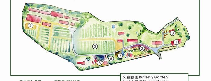 Eco tourism of New Life Farm is one of Hong Kong Social Enterprises.