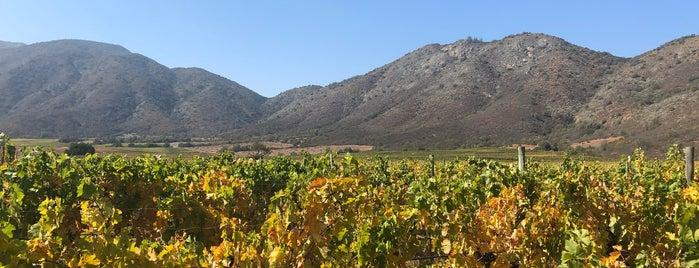 Viña Indomita is one of Wines.