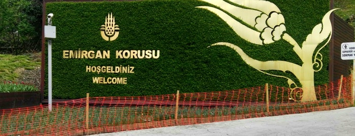 Emirgan Parkı is one of Locais curtidos por 🇹🇷 Samimî.