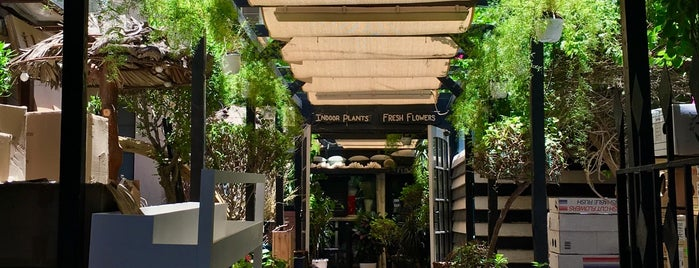 Singapore Flowers is one of Bahrain - Wedding Shops.