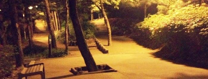 학동공원 is one of Locais salvos de Darina.