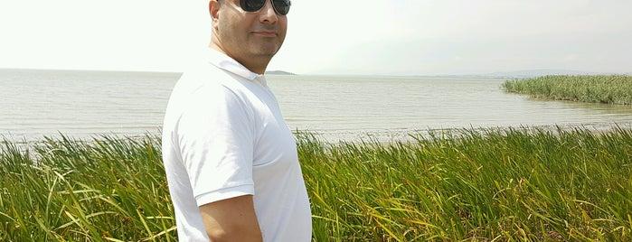 Uluabat Gölü is one of Lieux qui ont plu à Mevlüt🎬〽⌚🌇🚘💯✔.