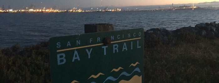 San Francisco Bay Trail is one of Marin County's Best.