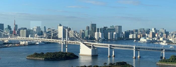 Grand Nikko Tokyo Daiba is one of Locais curtidos por Turusan.