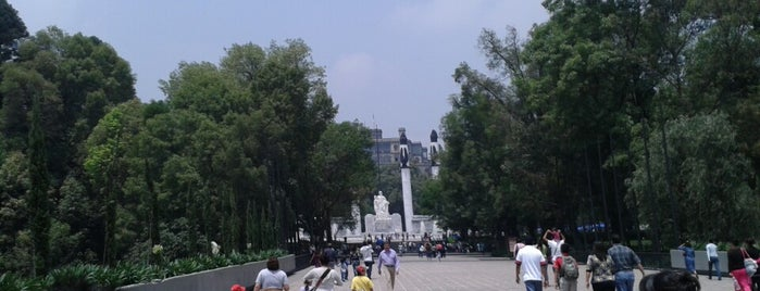Chapultepec is one of Some best places of Mexico City..
