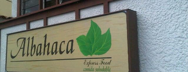Albahaca is one of Vivir Mejor.