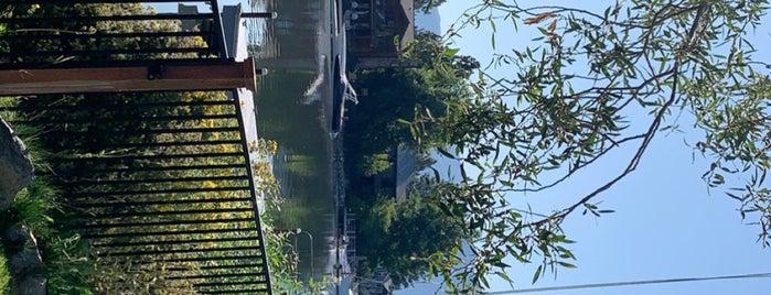City of South Lake Tahoe is one of Claudio : понравившиеся места.