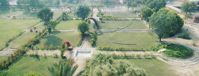 Junagarh Fort is one of India - Bikaner.