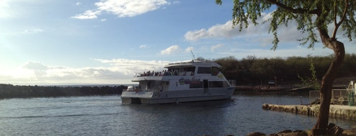 Expeditions Ferry to Lahaina is one of Posti che sono piaciuti a Amanda.