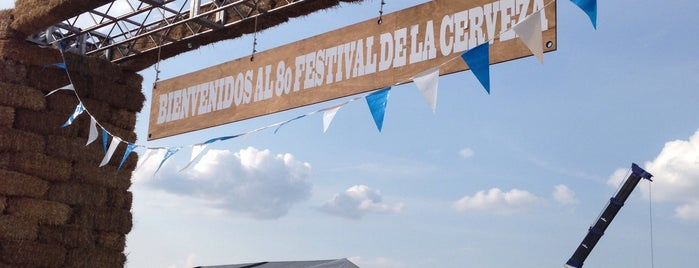 Festival de la Cerveza is one of Locais curtidos por Nayeli.
