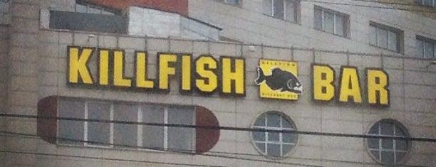 Killfish is one of Locais salvos de Ингвар.