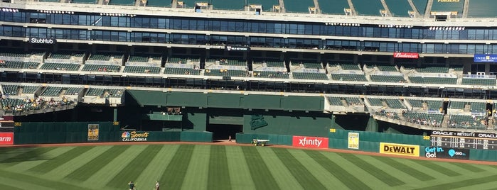 Rickey Henderson Field is one of San Francisco.