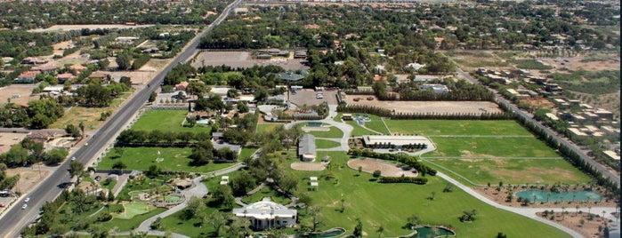 "Tonnesen Team Real Estate - Las Vegas, NV is one of Tempat yang Disukai Michael ""perkolate.com""."