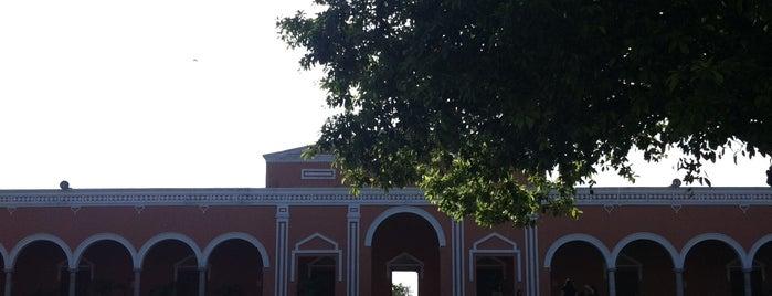Hacienda Chichí Suárez is one of erykacea: сохраненные места.