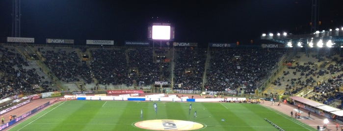 Stadio Renato Dall'Ara is one of app check!.