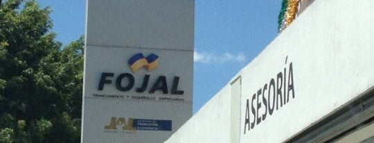 Fojal is one of Luigi 님이 좋아한 장소.