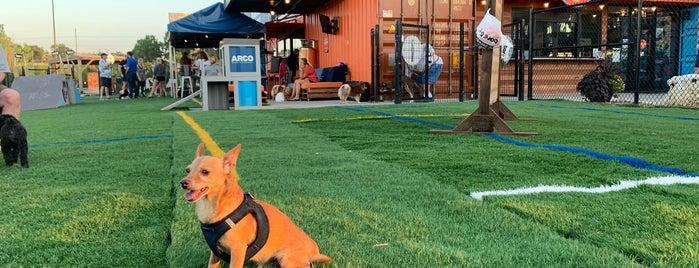 Bar K Dog Bar is one of Best: Kansas City 💯.