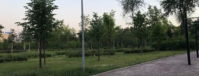 Парк «Яблоневый сад» is one of Lugares favoritos de Draco.