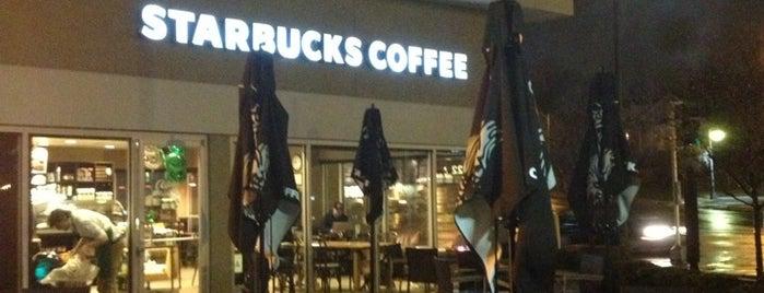 Starbucks is one of Orte, die Bethany gefallen.