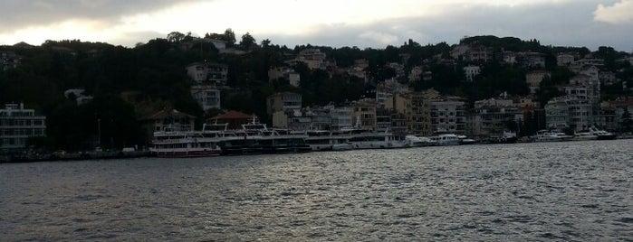 Beşiktaş-Küçüksu Motoru is one of Locais curtidos por Selin.