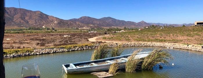 Troika is one of Ensenada.