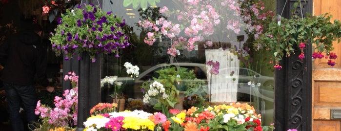 Steves Flower market is one of Orte, die Kate gefallen.