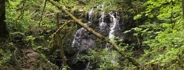 Woodburn Falls is one of huskyboi 님이 좋아한 장소.