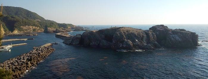 経島ウミネコ繁殖地 is one of Orte, die ZN gefallen.