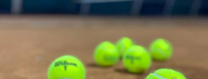 Darakeh Tennis Club is one of Orte, die Ava gefallen.