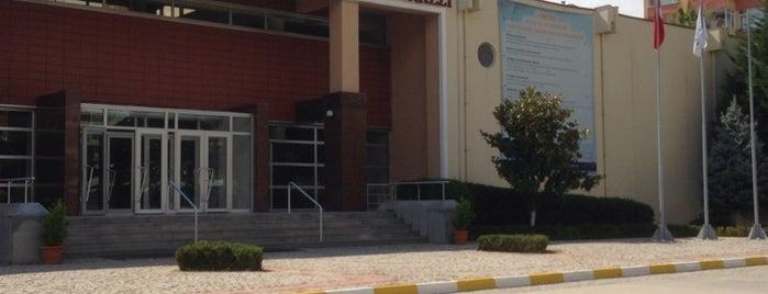 Ahmet Elginkan Mesleki ve Teknik Eğitim Merkezi is one of Nakiさんのお気に入りスポット.