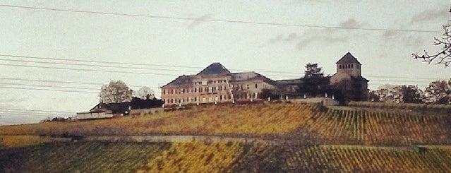 Schloss Johannisberg is one of Lugares favoritos de Ekaterina.
