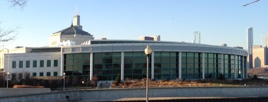 Shedd Aquarium is one of Parents in Town!.